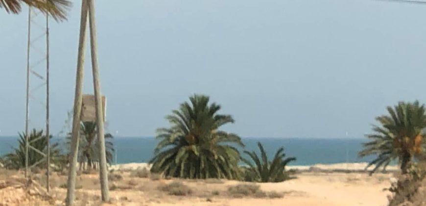 Terrain avec vue de mer et palmiers