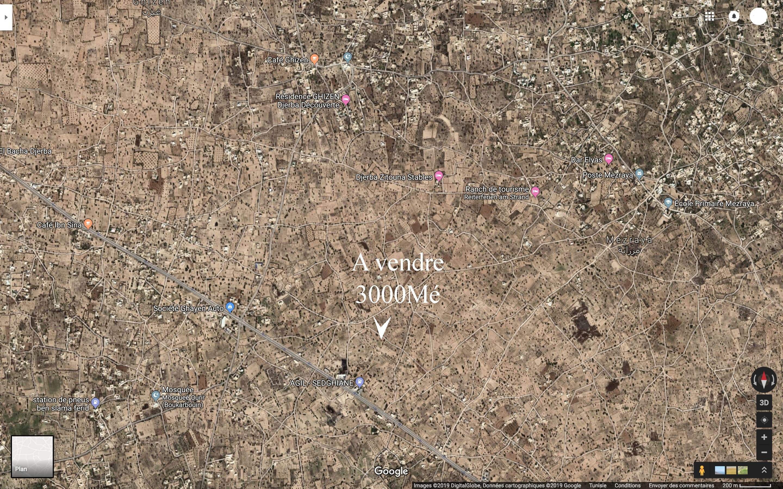 grand terrain agricole ou pour construction a mezraya Djerba